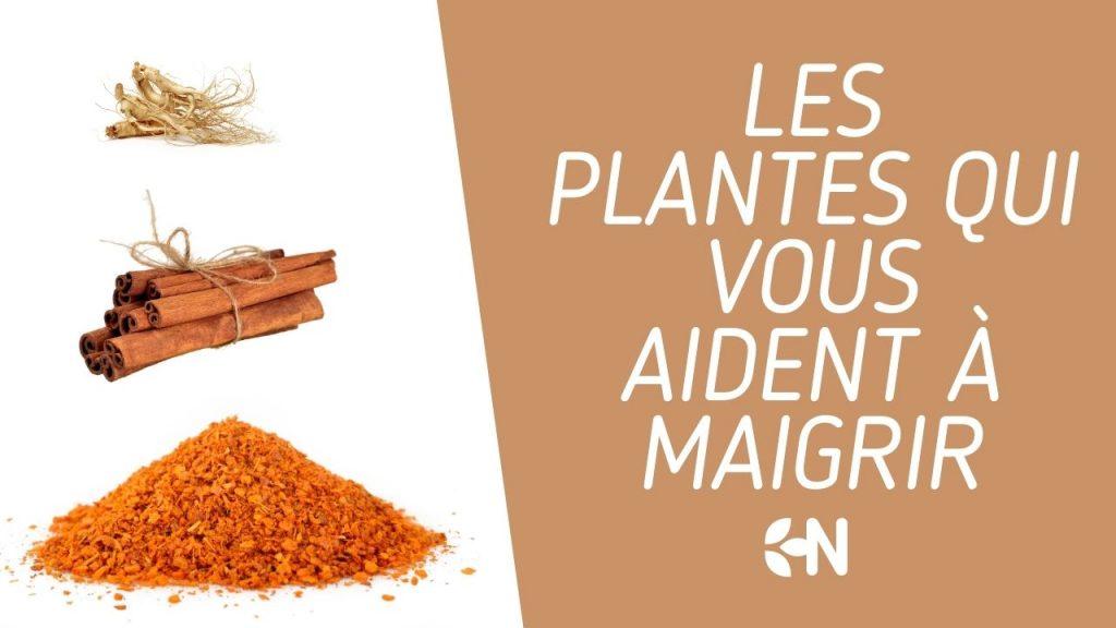 les plantes qui vous aident à maigrir
